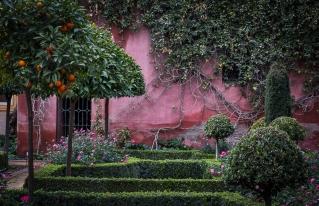 Courtyard in Seville